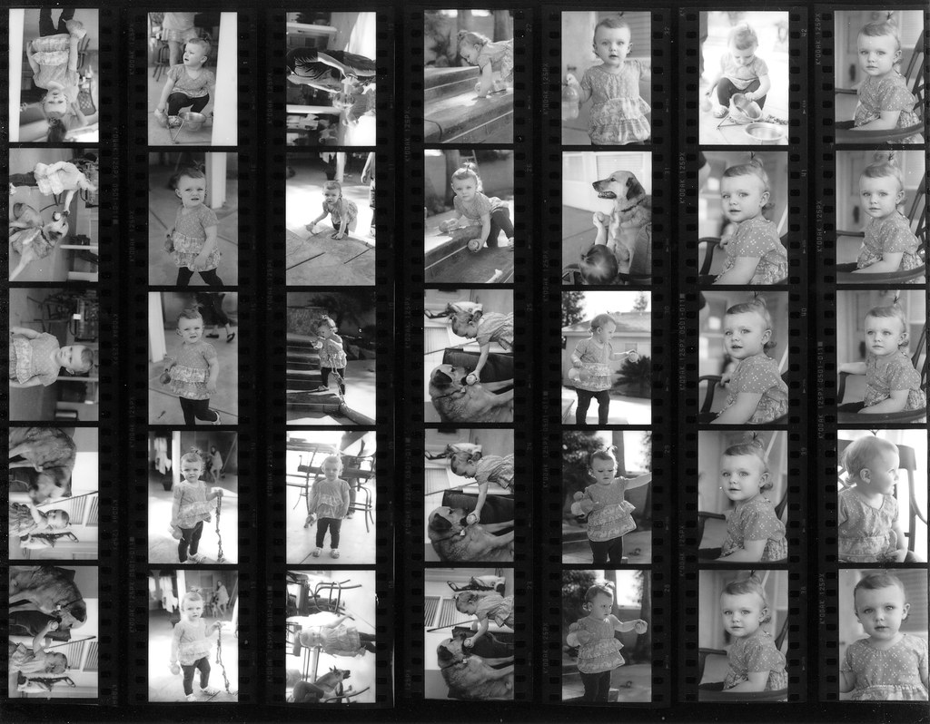 Lorraine Contact Sheet