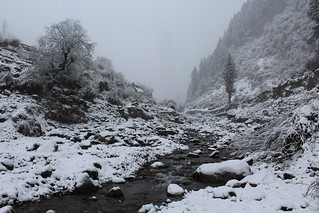Snowed out river bank, Barot valley | by atulgoyalmaverick
