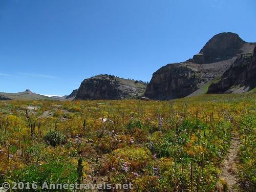 Teton Shelf Trail, Jedediah Smith Wilderness, Wyoming