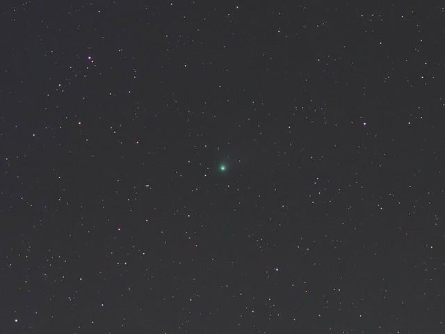 カタリナ彗星 (2016/1/19 02:29)
