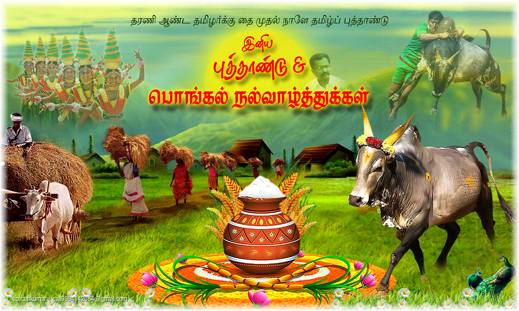 Pongal greetings hd 2016 np ramkumar flickr pongal greetings hd 2016 by npramkumar m4hsunfo