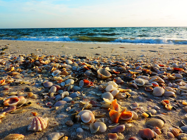 Barefoot Beach, Naples, Florida