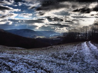 January Landscape | by fotomuse2014