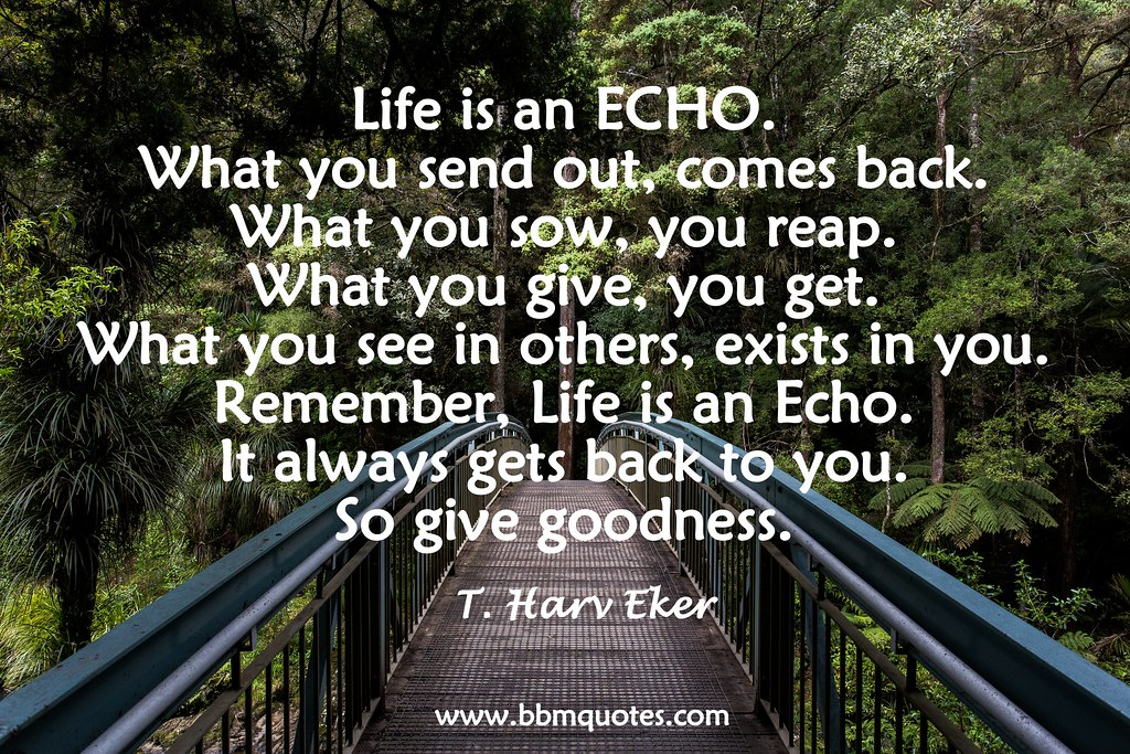 ... Quote By T. Harv Eker | By BBMQuotes
