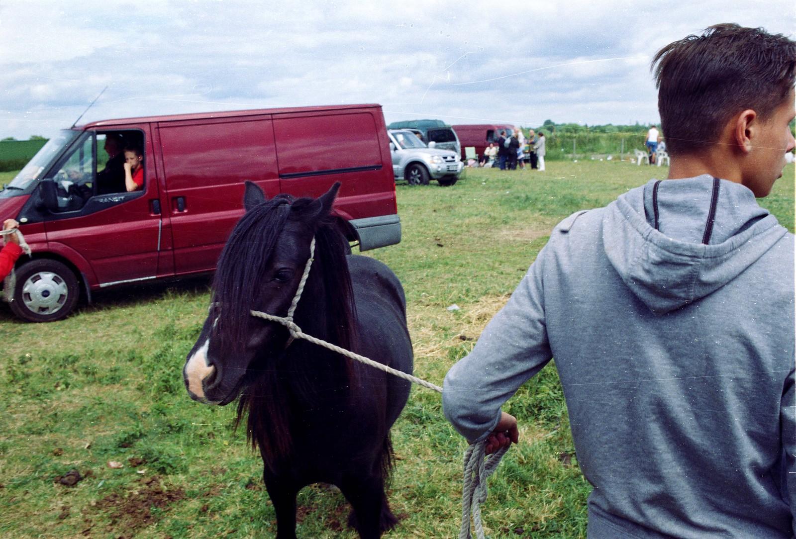 horse fair   by conor.beary