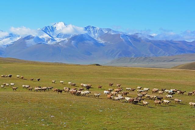 Northern Xinjiang,China