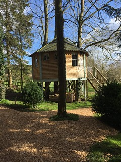 Glamping in Tinker Tree House west lexham | by Headhigheartstrong