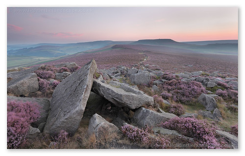 Higger Pinks and Purples | by Hadrian Frankland