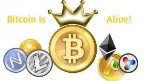 42 Coin Solo Mining Dogecoin