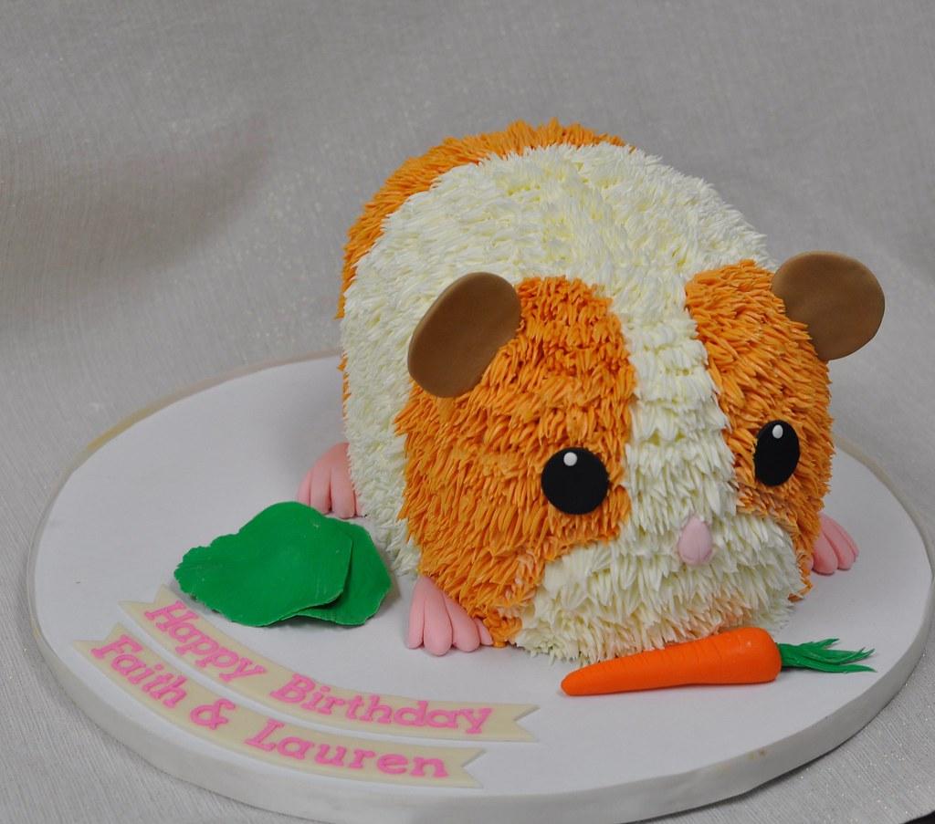 Hamster Birthday Cake Jenny Wenny Flickr