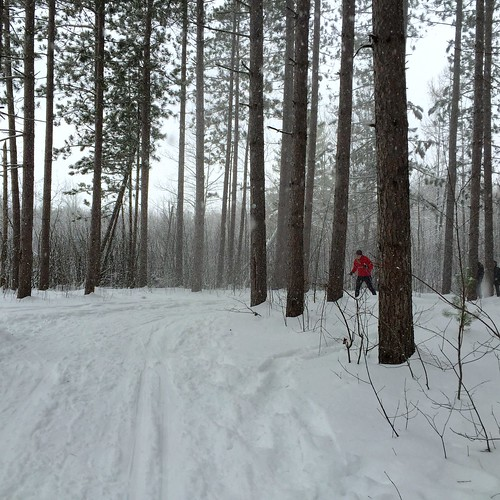 XC ski at Pine Grove