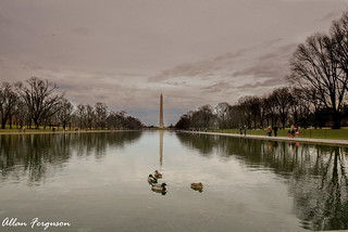 Reflection Pool | by Allan-1966