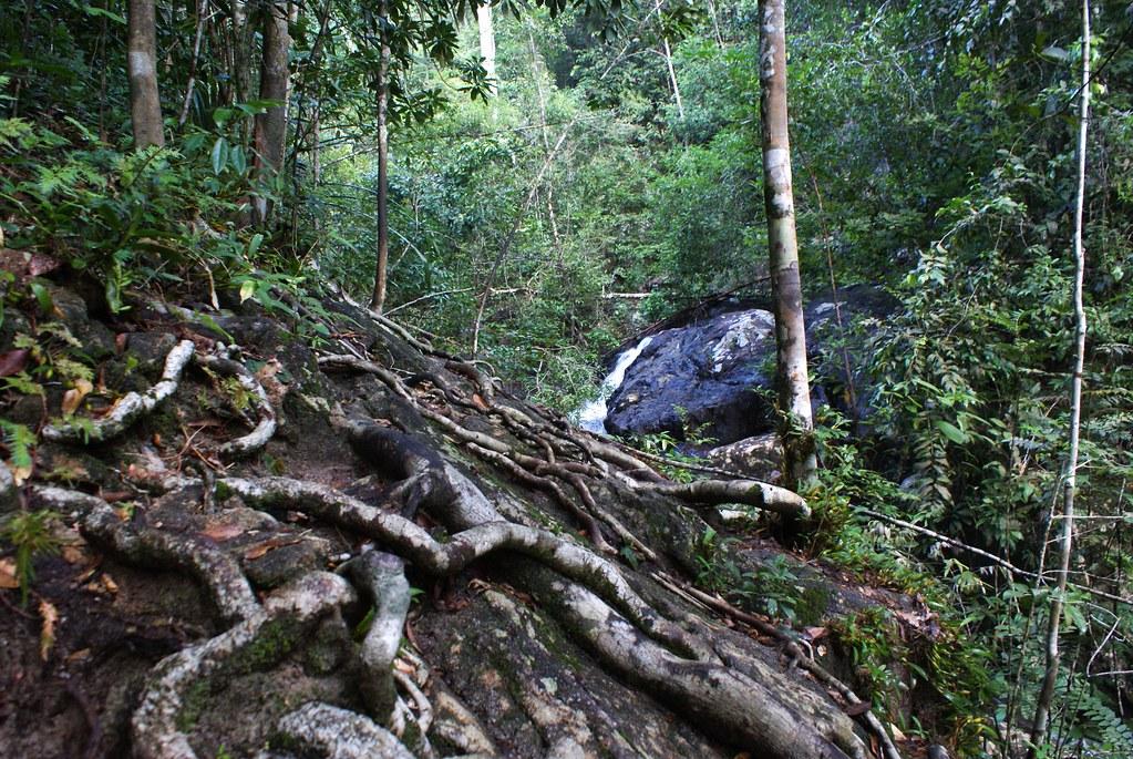 Un des parcs de l'île de Koh Phangan en Thailande.