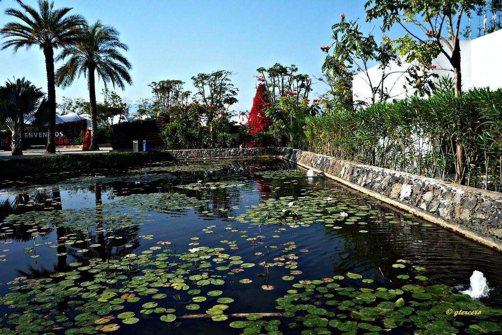 Jardin Acuatico En Jardines De Mexico Jojutla Morelos Flickr
