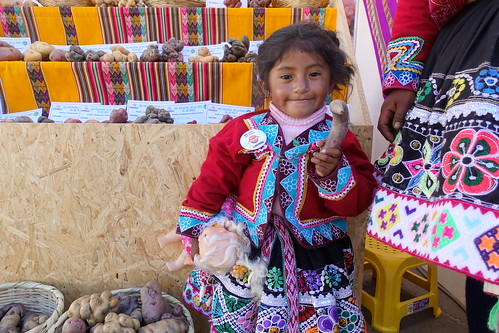 A young girl holds a native potato at her mother's stall at the World Potato Congress in Cusco, Peru. Photo: Holly Holmes/RTB | by rtb_cgiar