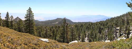 260 Panorama shot from the unmaintained Tamarack Trail | by _JFR_