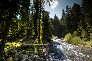 East Fork near Tamanawas Falls Trailhead | by mendhak