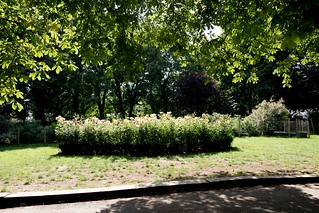 2017 - Open Square Garden - Saturday - 04 - Barnsbury Square -7176 | by Out To The Streets