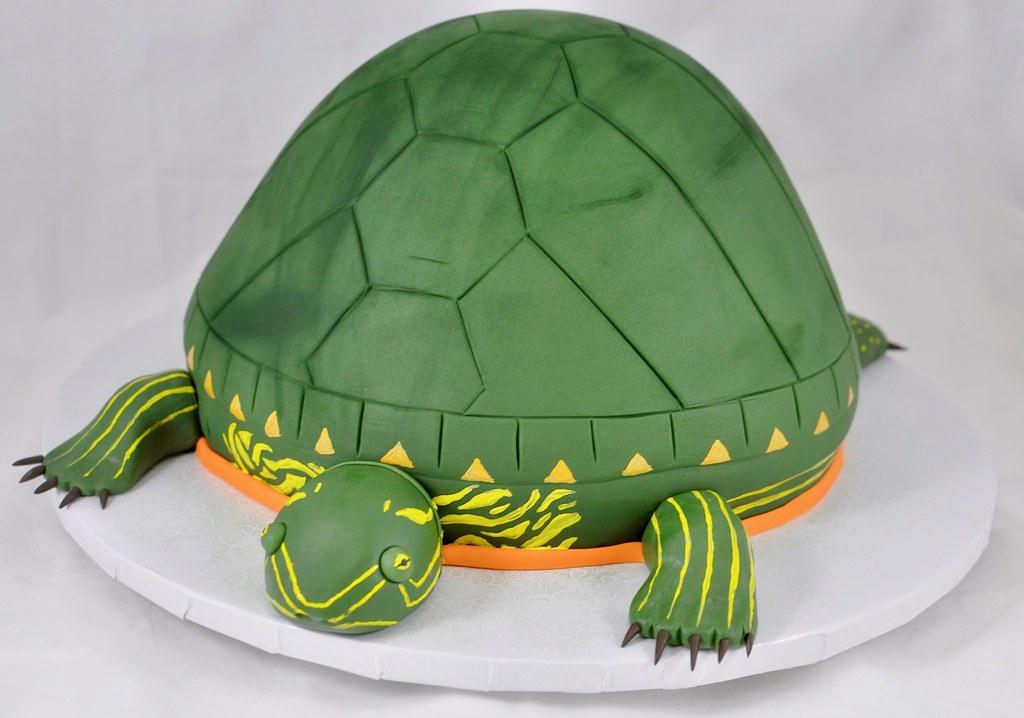 Turtle Birthday Cake Jenny Wenny Flickr