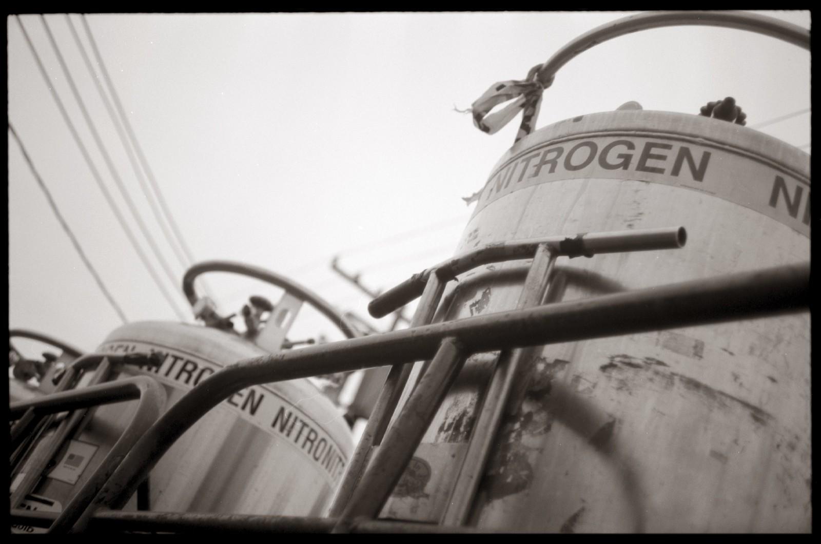 Nitrogen | by efo