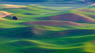 Steptoe Butte | by pixelmama