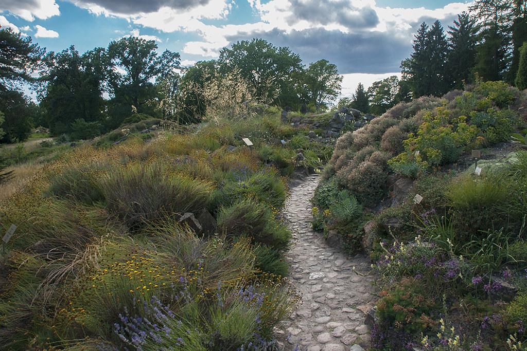 Berlin Botanischer Garten Sony Dsc Julianna Zdunich Flickr