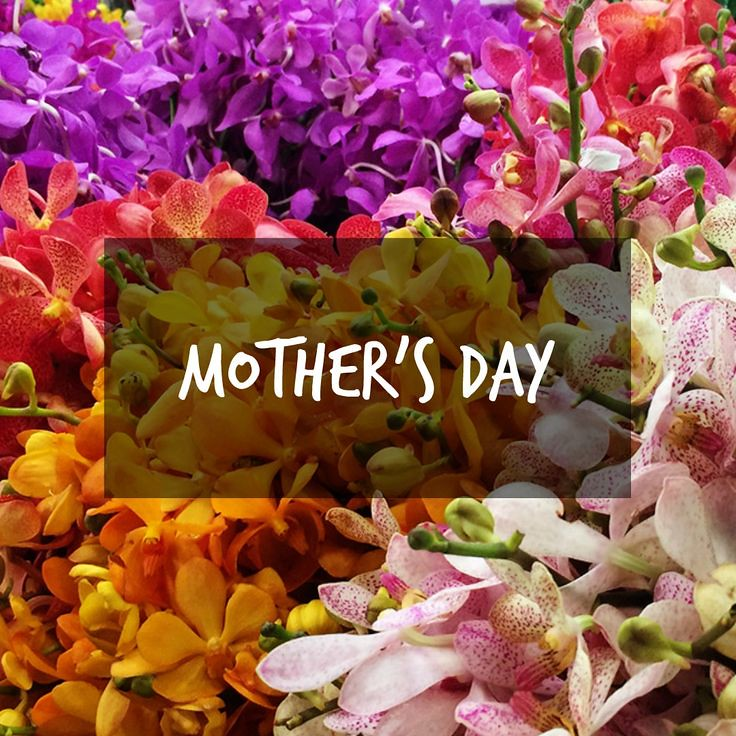 Mothers Day Quotes Hope You Had A Great Day Of Celebrat Flickr