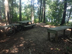 Charleston Park Upper Picnic Area
