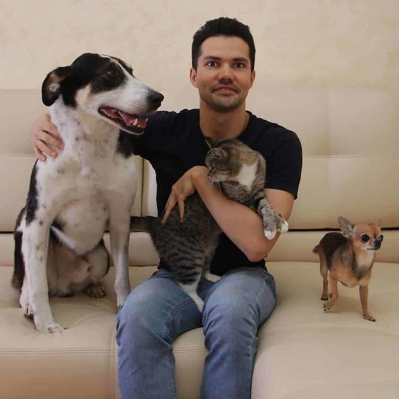 История основателя кошачьей гостиницы