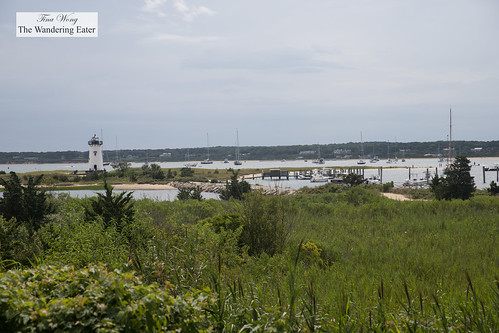 Scene from walking Edgartown to the Lighthouse Beach | by thewanderingeater