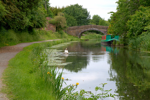 Scene by the canal | by Tony Worrall