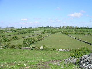 turlough Ballinacourty empty May 05. Photo by Micheline Sheehy Skefffington. | by Irish Ramsar Wetlands