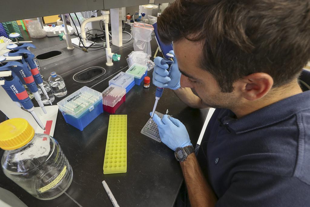 Virginia Sea Grant Graduate Research Fellow Researches How
