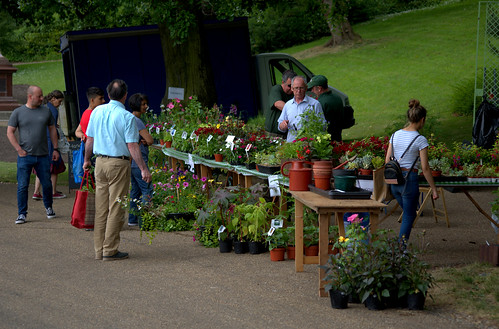 Visit the stunning Avenham & Miller parks for a plant and flower sale | by Tony Worrall