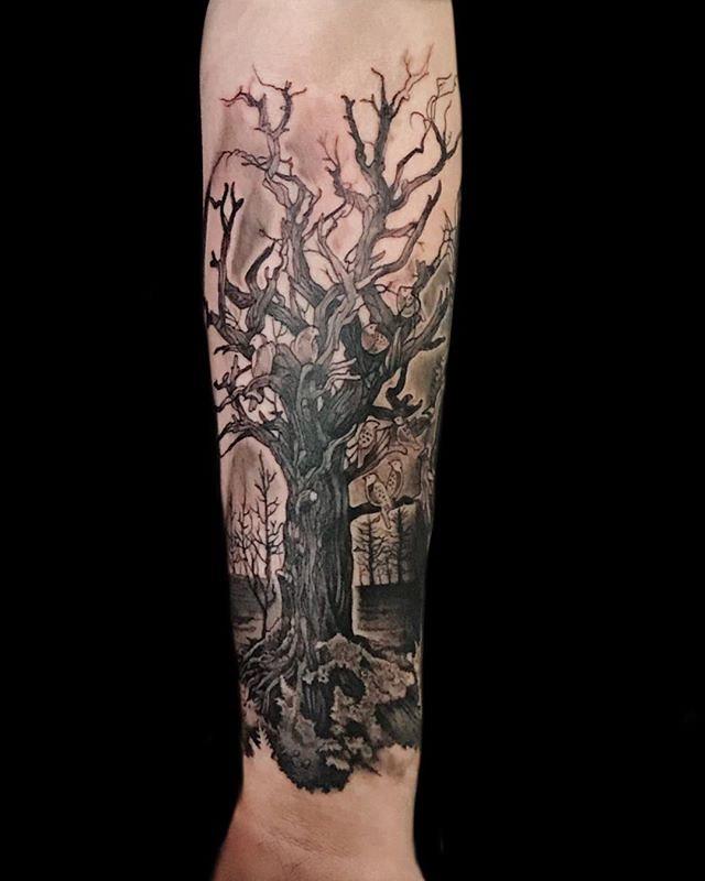 Family Tree Inside Forearm For Jur Done Yesterday At Tatt Flickr