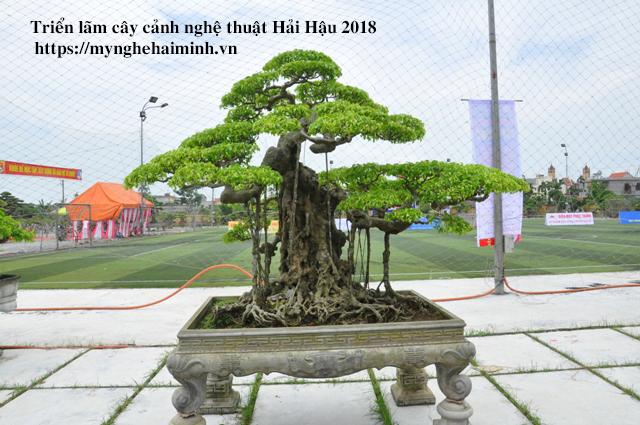 trien lam cay canh haihau CAY2018 14