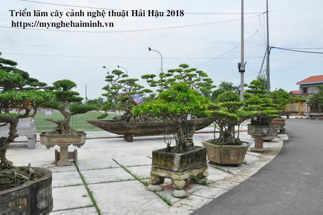 trien lam cay canh haihau CAY2018 33