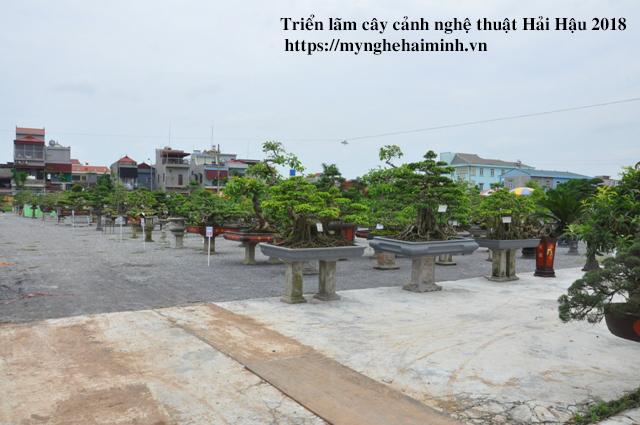 trien lam cay canh haihau CAY2018 48