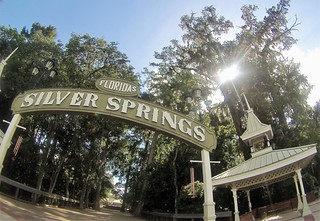 Travel to Ocala with a Dog, Silver Springs State Park, Ocala, Fla., Aug. 2017 | by JenniferHuber