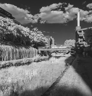 Infrared Canal | by Mark Alan Andre
