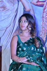 SailajaReddyAlludu Movie Successmeet Stills