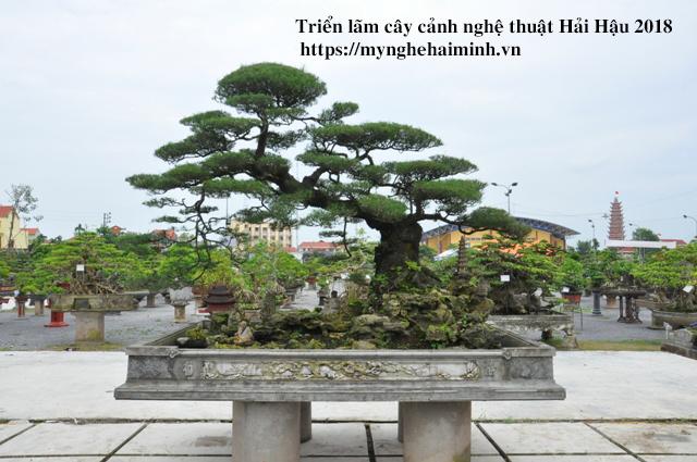 trien lam cay canh haihau CAY2018 51