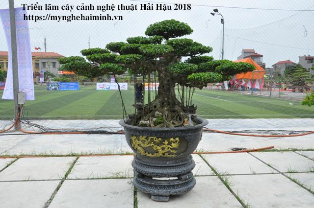 trien lam cay canh haihau CAY2018 42