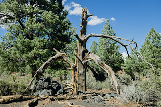 Sunset Crater Volcano National Monument | by jamiedaily