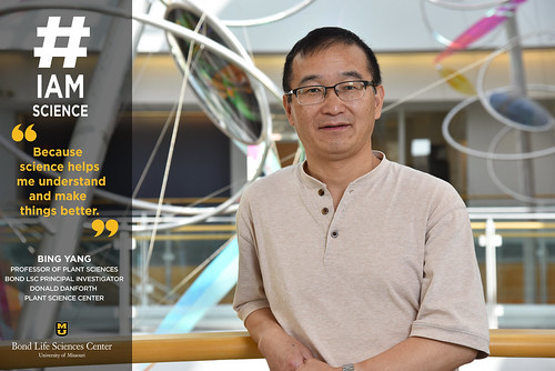 #IAmScience Bing Yang | by Bond LSC