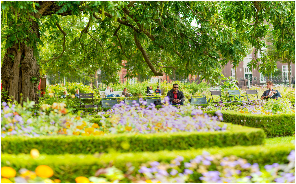 amsterdam gardens by martha case amsterdam gardens by martha case - Amsterdam Garden