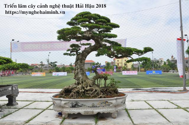 trien lam cay canh haihau CAY2018 18