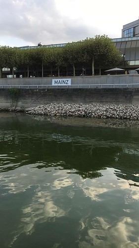 Water Level in Mainz | by Son of Groucho