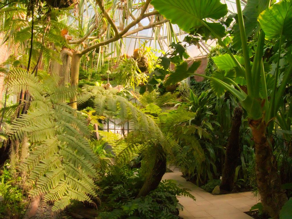jardin botanique metz by studio sw - Jardin Botanique Metz