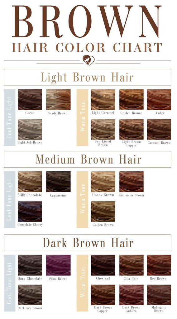 Hair Color 2017 2018 What Shade Of Brown Hair Color Cha Flickr